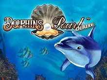 Дельфины Делюкс на реальные ставки