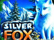 автомат Silver Fox в казино Вулкан